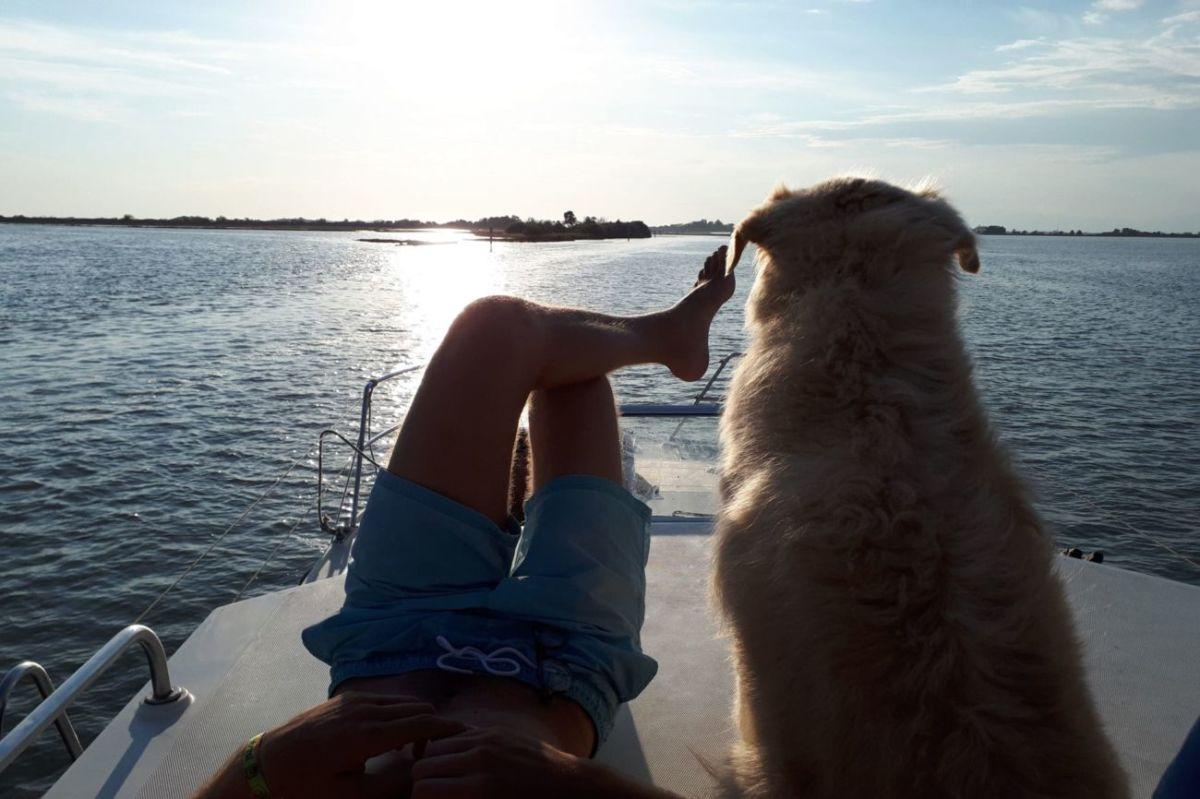 amici a quattro zampe barca houseboat