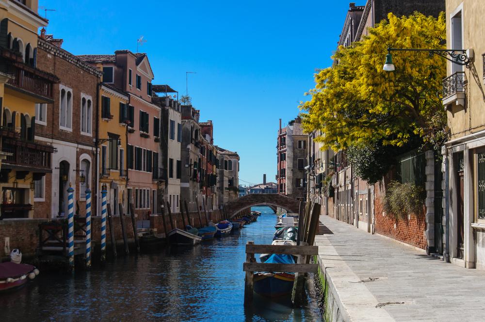 Frauentag Venedig Mimose Charterboot Hausboot