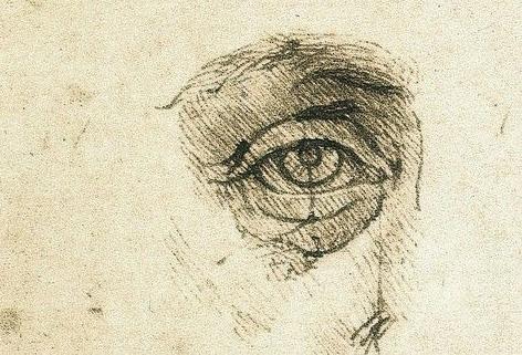 Leonardo da vinci disegni anatomici e proporzioni occhio umano Authentic human bodies